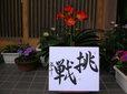 Weblog0705_050_1